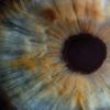 AIによって生成された人間の画像は「瞳孔の形」で区別できる - GIGAZINE