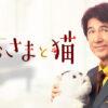 【ドラマパラビ】おじさまと猫|テレビ東京